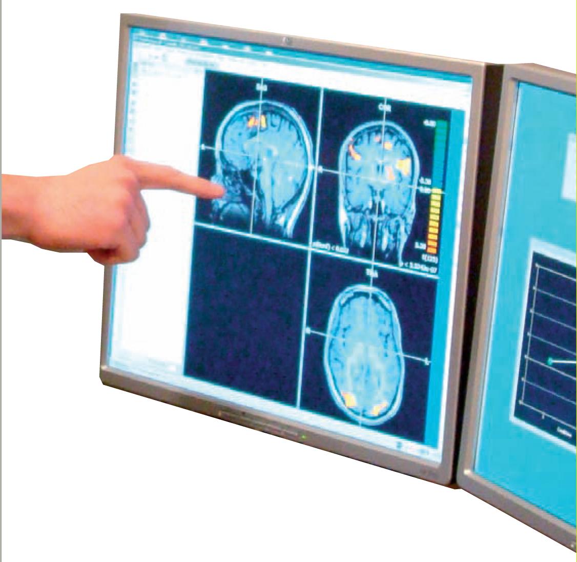 Master Physiologie, neurosciences et comportement